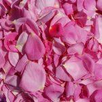 Розовое масло. Применение