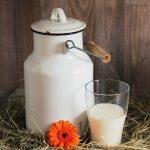Пить или не пить? Три факта о коровьем молоке.