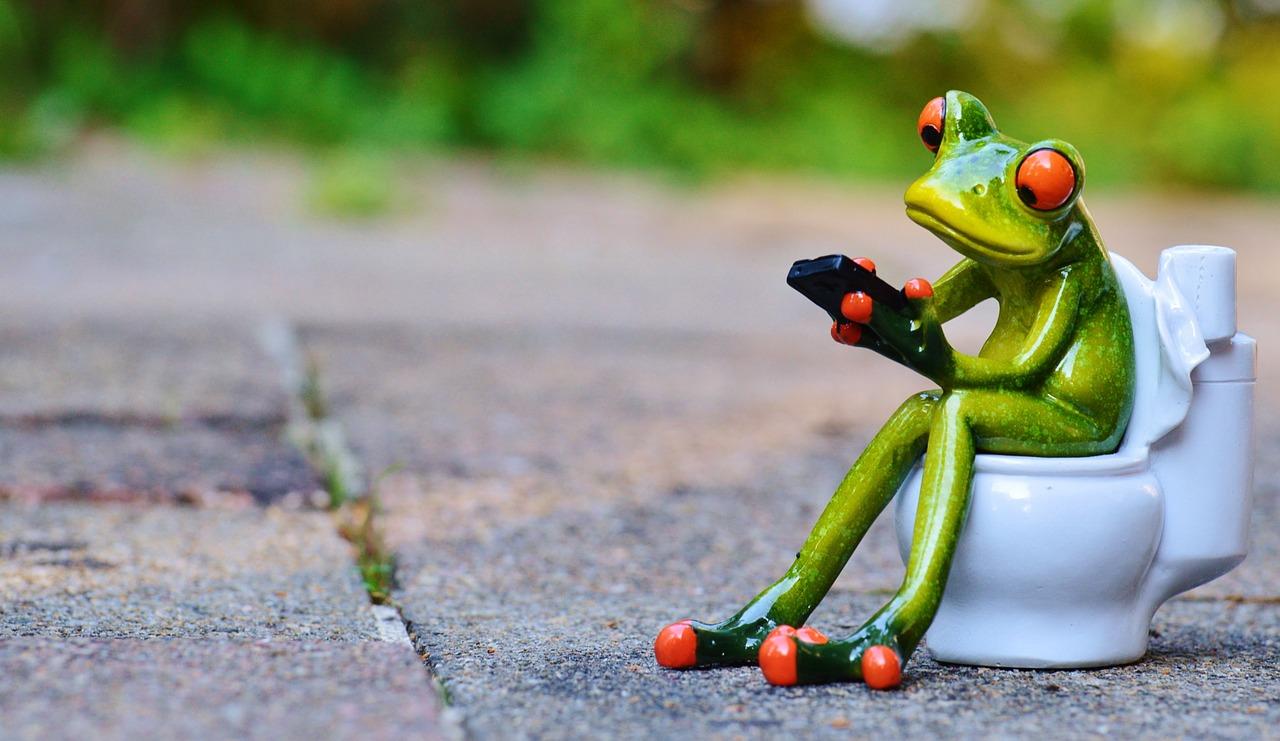 frog-tualet