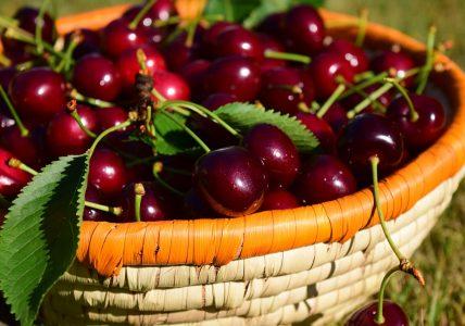 Сезон черешни. Чем полезна и опасна эта ягода?