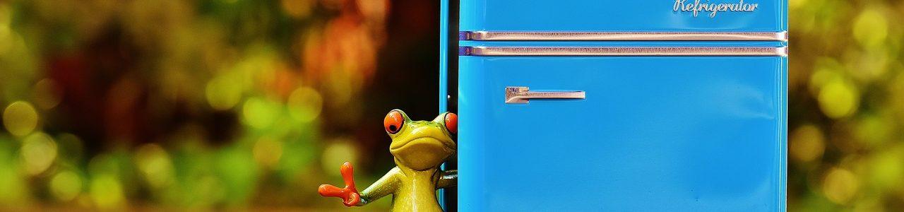 Холодильник — рассадник заразы?