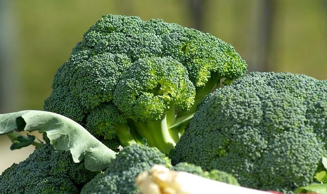 vegetables-brokkoli