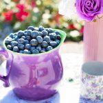 Полезная ягода — черника