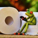 Вторая-третья жизнь для туалетной бумаги?