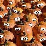 Не проходите мимо, ведь тыква — это не только реквизит на Хеллоуин.