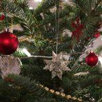 25 декабря — Рождество Христово по Новоюлианскому календарю
