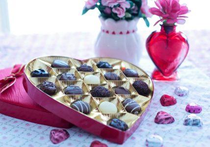 Шоколад — сладкая жизнь на горьких бобах