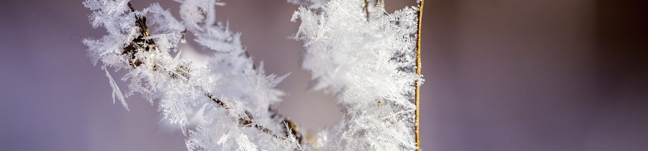 Как поддержать здоровье при резком похолодании